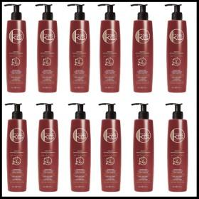 Lot de 12 Shampoing Keragold DD 500ml Kératine/Acide Hyaluronique sans sulfate